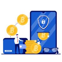 ¿Los wallets son seguros?