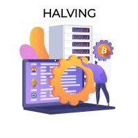 ¿Qué es un halving?