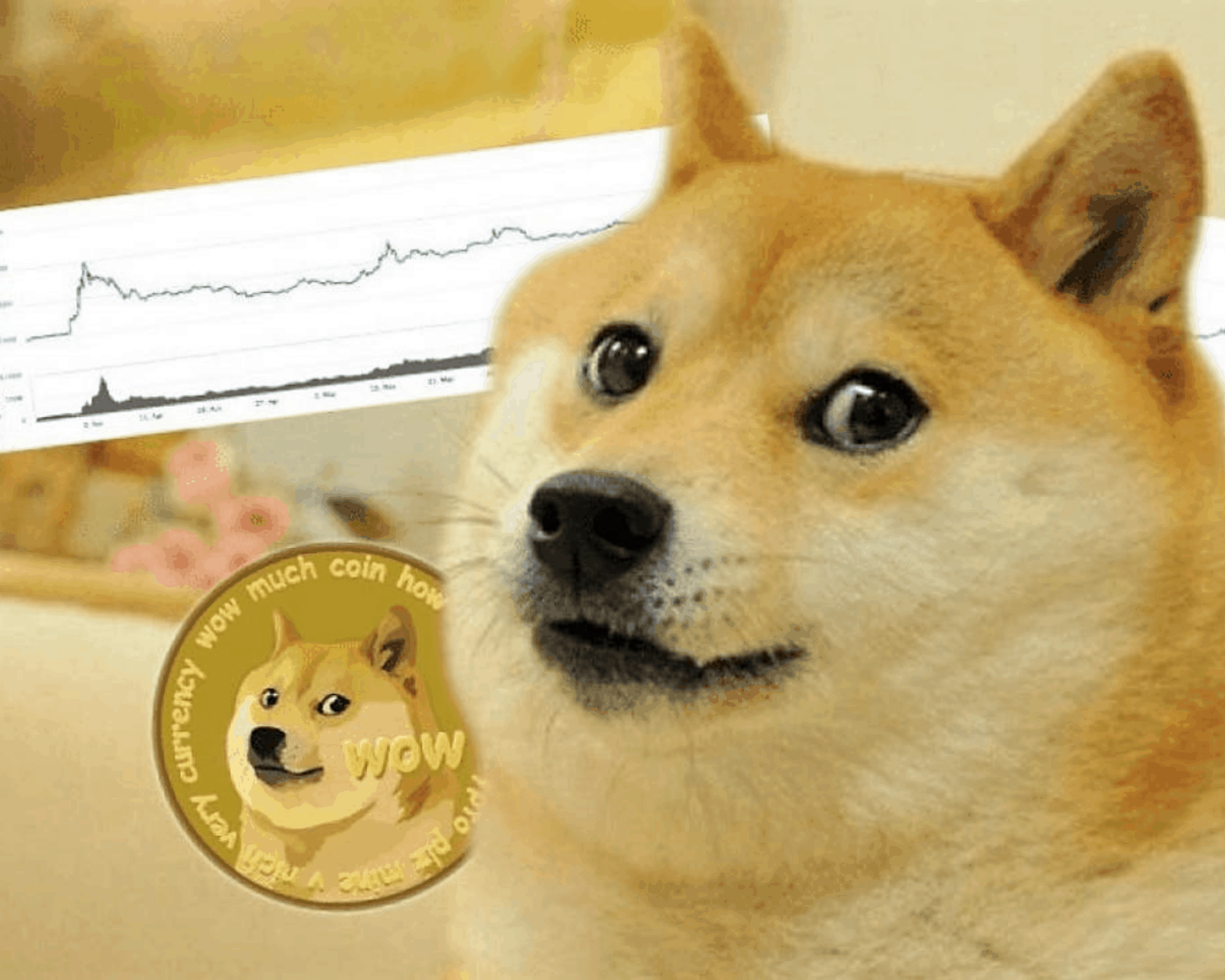 Newegg habilita pagos con DOGE